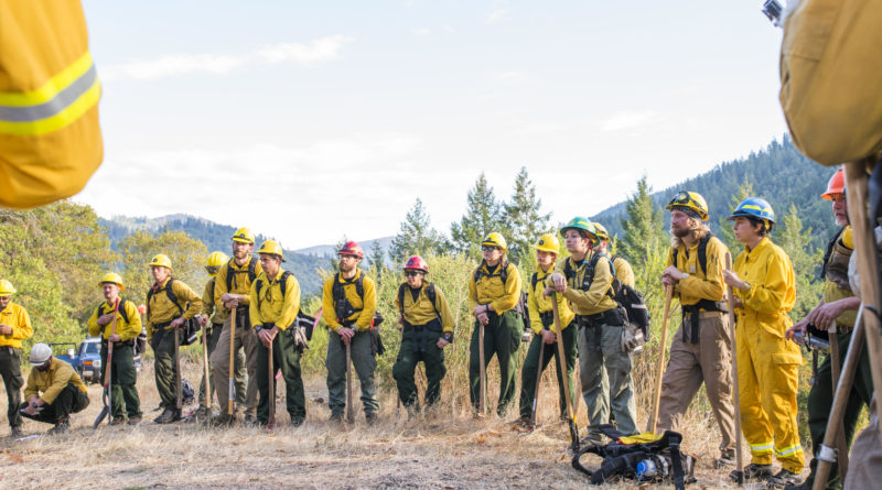 New Tribal Forestry concentration provides deeper understanding for future foresters