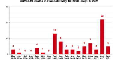 COVID-19 Death Rate Rises After August Surge